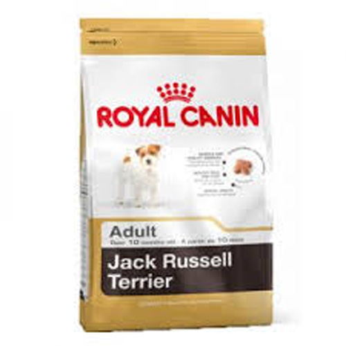 Jack russell adult 3kg
