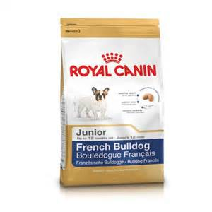 Bouledogue Junior 3kg