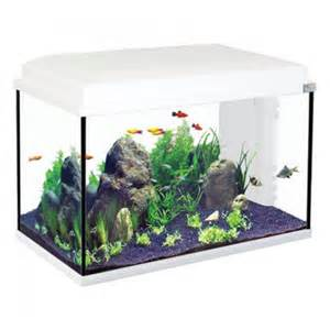 Aquarium Start