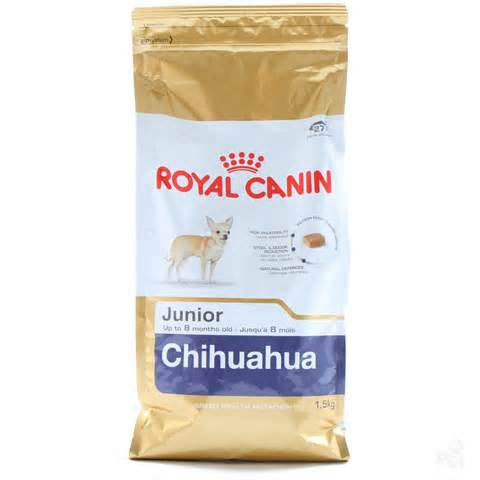 Chihuahua Adult 1.5 kg