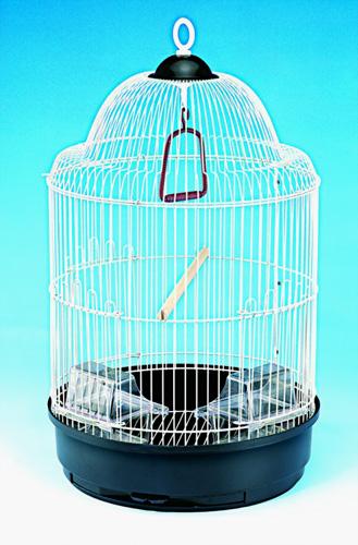 Cage Bird Flight