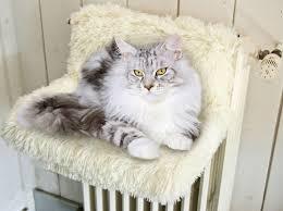Hamac radiateur blanc