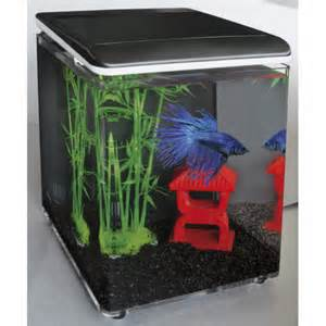 petit aquarium pour combattant avec cartouche filtrante et. Black Bedroom Furniture Sets. Home Design Ideas