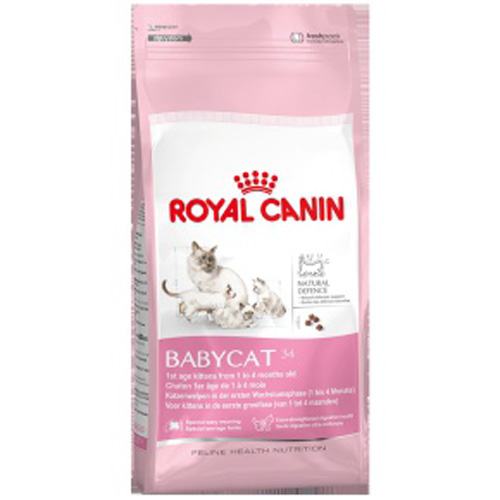 sac de 4kg de croquettes royal canin mother babycat pour les chattes en gestation et lactation. Black Bedroom Furniture Sets. Home Design Ideas